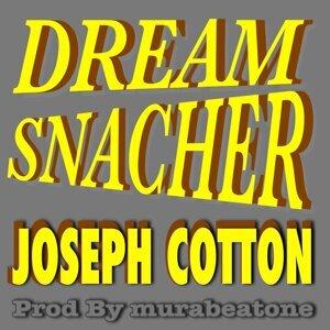 DREAM SNACHER (RIGHTNESS RIDDIM) (DREAM SNACHER (RIGHTNESS RIDDIM))