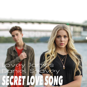 Secret Love Song