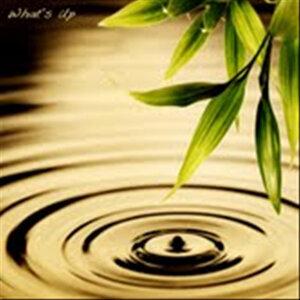 Letting Go (feat. Kuniko Asato)