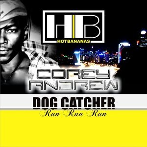 Dog Catcher (Run Run Run)