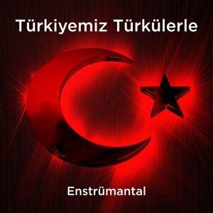 Türkiyemiz Türkülerle - Enstrümantal