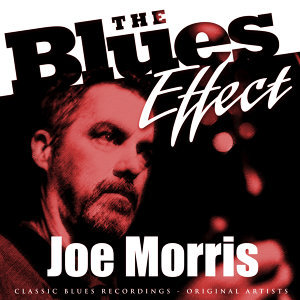 The Blues Effect - Joe Morris