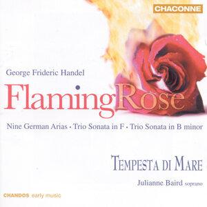 Handel: Flaming Rose