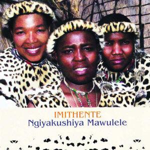 Ngiyakushiya Mawulele