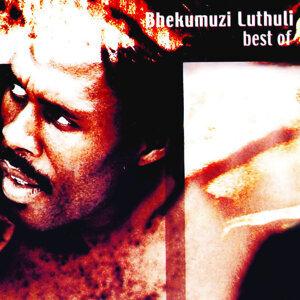 Best of Bhekumuzi Luthuli