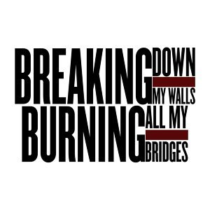 Breaking Down My Walls and Burning All My Bridges