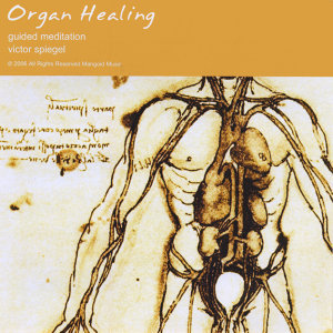 Organ Healing