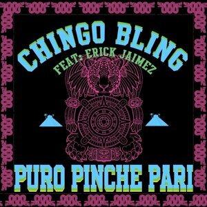 Puro Pinche Pari
