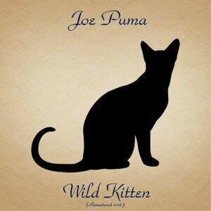 Wild Kitten - Remastered 2016