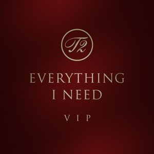 Everything I Need (Vip MIX)