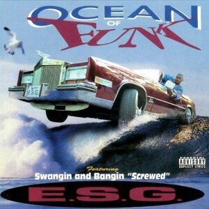 Ocean of Funk