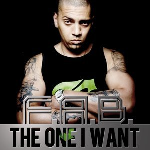 The One I Want - Radio Edit