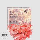 花語 : 罌粟花 The florid of Poppy
