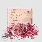花語 : 玫瑰 The florid of Rose