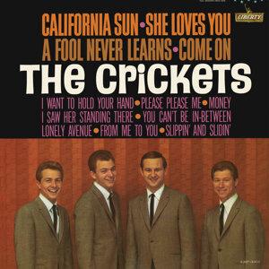 California Sun - She Loves You