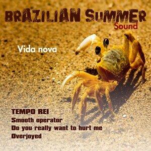 Vida Nova - Brazilian Summer Sound