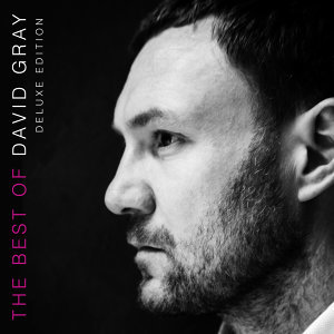 The Best of David Gray - Deluxe Edition