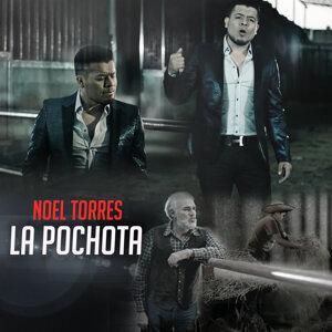 La Pochota