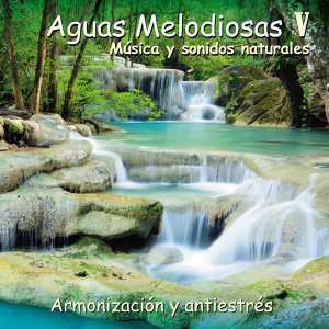Aguas Melodiosas V