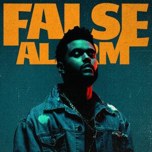 False Alarm