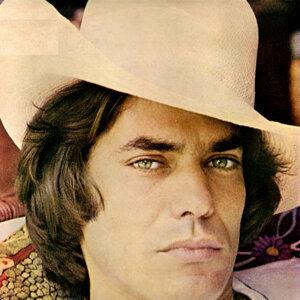 Ronnie Von (1978)