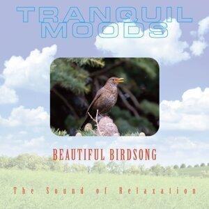 Beautiful Birdsong