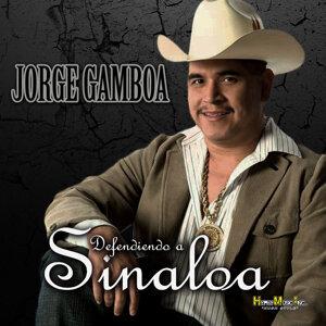 Defendiendo a Sinaloa