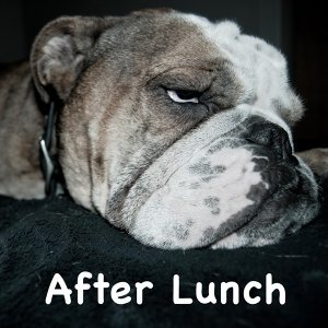 After Lunch (After Lunch)