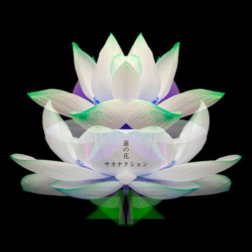 蓮の花 -movie version-