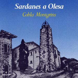 Sardanes a Olesa