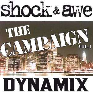 Shock and Awe: The campaign