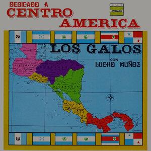 Dedicado a Centro America