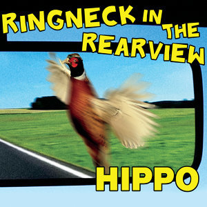 Ringneck in the Rearview