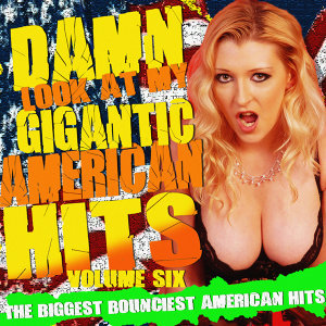 Damn! Look At My Gigantic American Hits! Vol.6