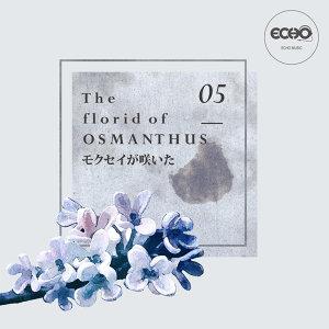 花語 : 桂花 The florid of Osmanthus
