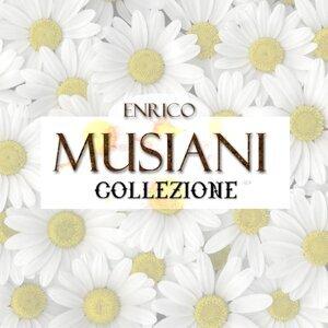 Enrico Musiani - Collezione