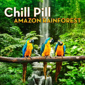 Chill Pill: Amazon Rainforest