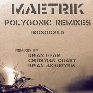 Polygon Bug - Polygonic Remixes