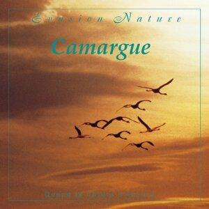 Evasion nature : Camargue