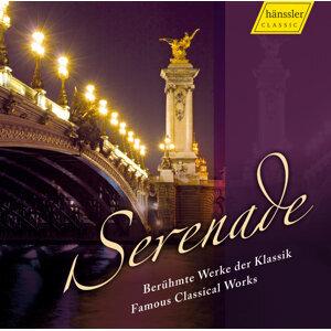 Orchestral Music - Mozart, W.A. / Handel, G.F. / Pachelbel, J. / Corelli, A. / Bach, J.S. (Serenade)