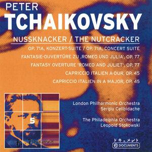 Tchaikovsky - A Portrait, Vol. 5 (1928-1948)