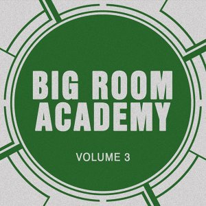 Big Room Academy, Vol. 3