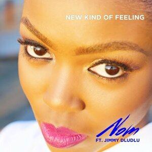 New Kind of Feeling (feat. Jimmy Dludlu)