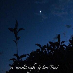 on moonlit night