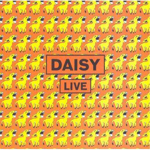Daisy Live