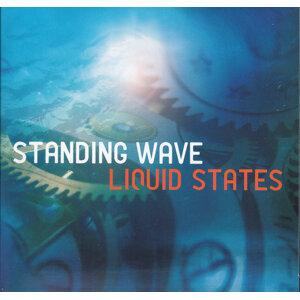 Liquid States