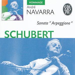 Schubert: Sonate 'Arpeggione'