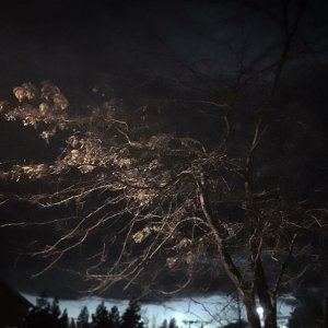 Light on the Dark Companion - EP