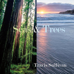 Seas & Trees (feat. Dave Berger & John Menegon)