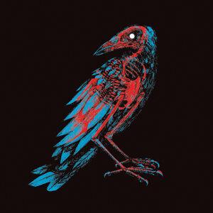 Pájaros y Cuchillos